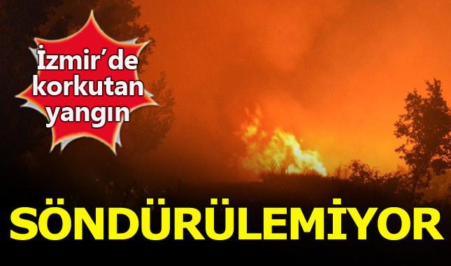 Son dakika... İzmir'de orman yangını! Söndürülemiyor - İzmir Haberleri