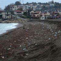 Akçakoca sahilindeki görüntü şaşırttı