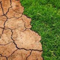 Arazi Tahribatının Dengelenmesi Konusunda Raporlamalar