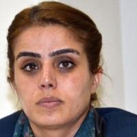 Ayşe Acar Başaran kimdir? Neden gözaltına alındı? (HDP)