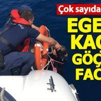 Balıkesir'de kaçak göçmen faciası!