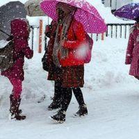 Bitlis 10 ocak 2019 perşembe okullar tatil mi | Bitlis Valiliği kar tatili açıklaması | Bitlis'te yarın okul var mı?