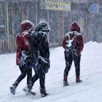 Bitlis okullar tatil mi 11 Ocak 2019 pazartesi | Bitlis'te yarın hangi ilçeler tatil | Bitlis Valiliği resmi açıklama