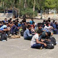Edirne'de 44 kaçak göçmen yakalandı