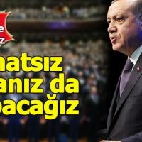 Erdoğan'dan nükleer enerji çıkışı: Rahatsız olsanız da yapacağız