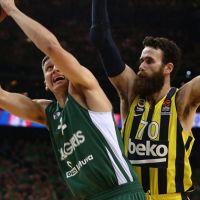 Fenerbahçe Beko üst üste 5. kez Final Four'da