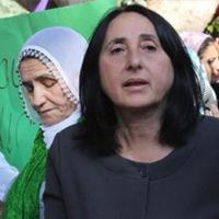 HDP'li Aydoğan'a hapis cezası
