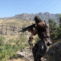 Hakkari'deki operasyonda 2 terörist öldürüldü