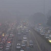 Hava kirliliğinde rekor kıran Yeni Delhi'de temiz hava satışı başladı