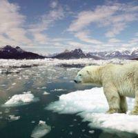İklim değişikliği interneti de vuracak