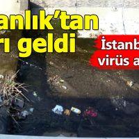 İstanbul'da virüs paniği