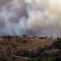 İzmir'de orman yangınları