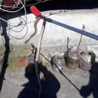 Kahramanmaraş'ta evin çatısındaki yılan paniğe sebep oldu