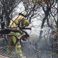 Kavacık'ta ormanlık alanda yangın çıktı