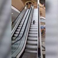Kedinin yürüyen merdiveni oyun aracı yapması