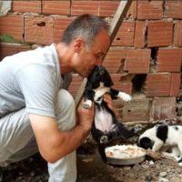 Köpeği dereye atan belediye işçisine, köpeklere bakma görevi verildi