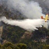Mangal yaparken ormanı yakan 2 kişiye 13.5 milyon euro ceza