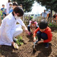 Minikler, Yerli ve Organik Tarımın Önemini Hobi Bahçelerinde Öğreniyor