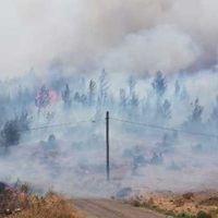Muğla ve Mersin'de orman yangını