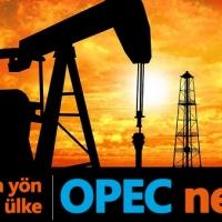 OPEC nedir? Ne amaçla kuruldu, hangi devletler üye?