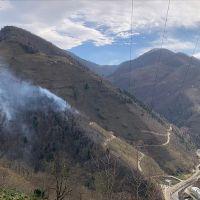 Orman yangınlarına sebep olanlara suç duyurusu