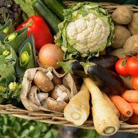 Sağlıklı yaşamın sırrı organik beslenmede