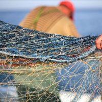 Sıcak hava balıkçıların umudunu yıktı