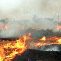 Silivri'de çıkan yangın yerleşim yerlerine ilerliyor