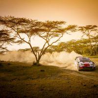 Toyota Safari Rallisi'nden zaferle dönmeyi başardı