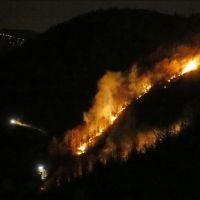 Trabzon'da meydana gelen örtü yangınları söndürüldü