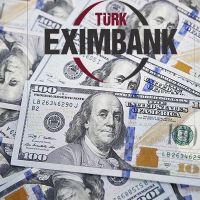 Türk Eximbank'tan döviz kredilerine müdahele