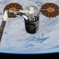 Uzay istasyonuna 40 fare ve yiyecek gönderildi!