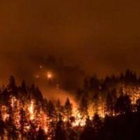 Yangın çıkaran gence 36 milyon dolar ceza