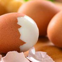 Yumurta ihracatında rekor kırıldı
