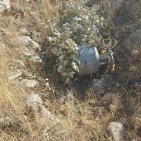 Mardin'de araziye gizlenmiş 2 piknik tüpü ele geçirildi