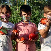 """Karabük'te """"ata tohumları"""" minik öğrencilerin ellerinde hayat buluyor"""