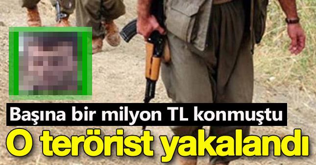 PKK'lı terörist  Cahit Beyhan öldürüldü