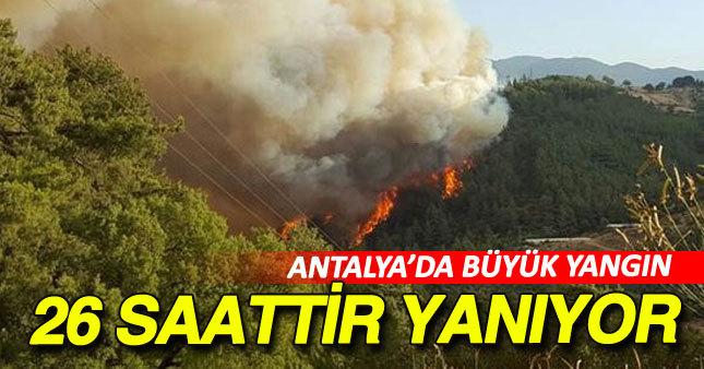 Antalya'da orman yangını devam ediyor