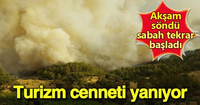 Antalya'daki orman yangını tekrar başladı
