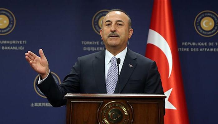 Çavuşoğlu'dan AP Başkanına sert eleştiri