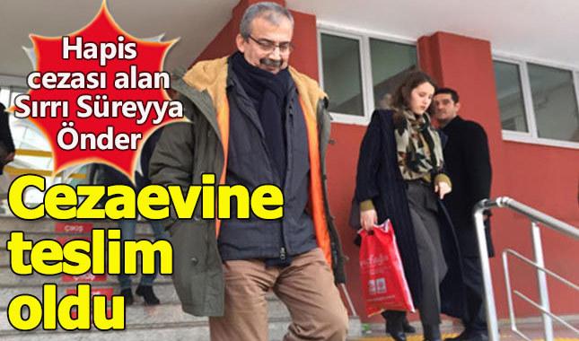 Sırrı Süreyya Önder kimdir, neden tutuklandı, kaç yıl ceza aldı, Sırrı Süreyya Önder suçu ne?