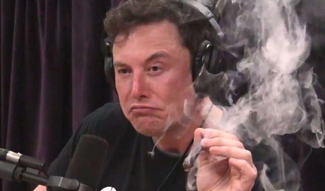 Elon Musk'a cinsel içerikli film teklifi