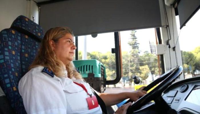 Engelli kedileriyle otobüs şoförlüğü yapıyor
