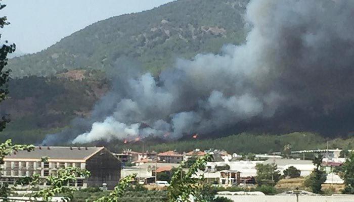 Fethiye'de orman yangını söndürüldü