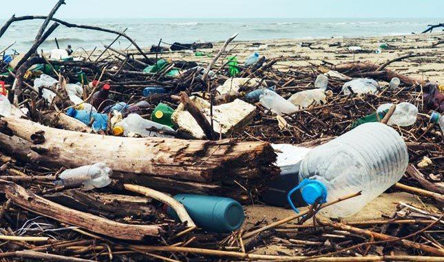 Greenpeace: Plastik atık çöplüğünün yeni adresi Türkiye