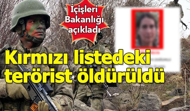 İçişleri Bakanlığı açıkladı: Kırmızı listedeki terörist öldürüldü
