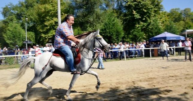 İsmail Türüt'ün atlarına el konuldu!