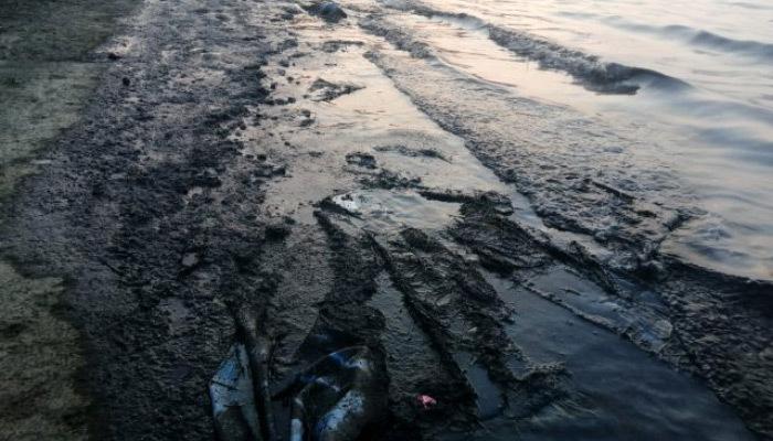 İzmir'de korkunç manzara! Atıklar denizi kirletti