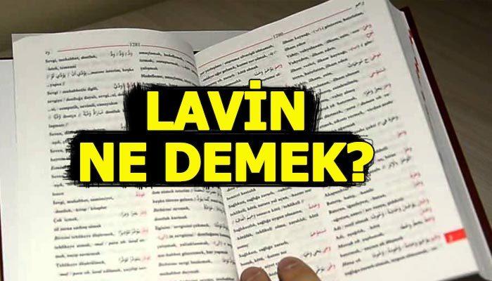 Lavin ne demek | Lavin anlamı ne | Lavin sözlük anlamı Türkçe Kürtçe