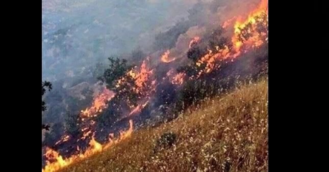 Lice'deki yangın sürüyor